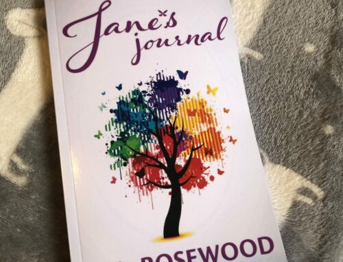 Jane's Journal Now In Paperback